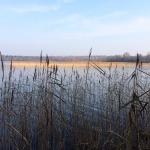 Совместите отдых на озере в Тверской области с работой над собой