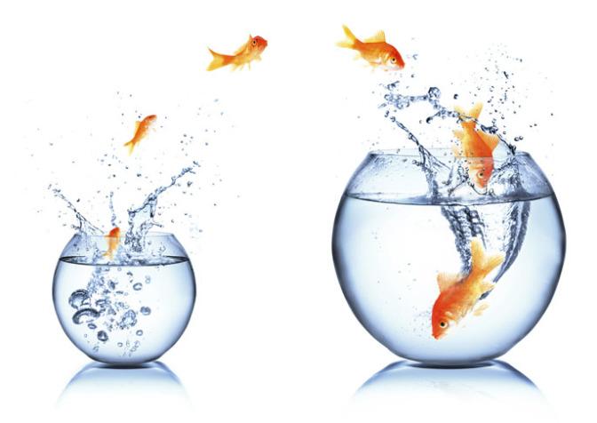 Карьерный рост путем перехода на другую работу с повышением в должности