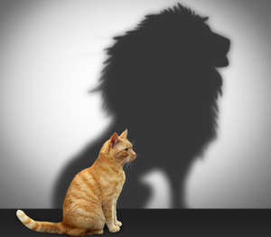 Высокая самооценка - основа успеха