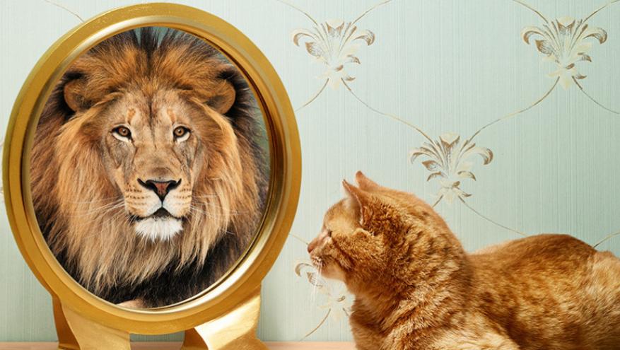 Преимущества высокой самооценки