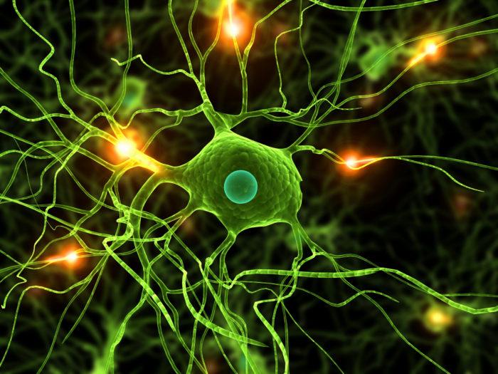 Связь подсознания с эмоции происходит путем взаимодействия нейронов головного мозга между собой