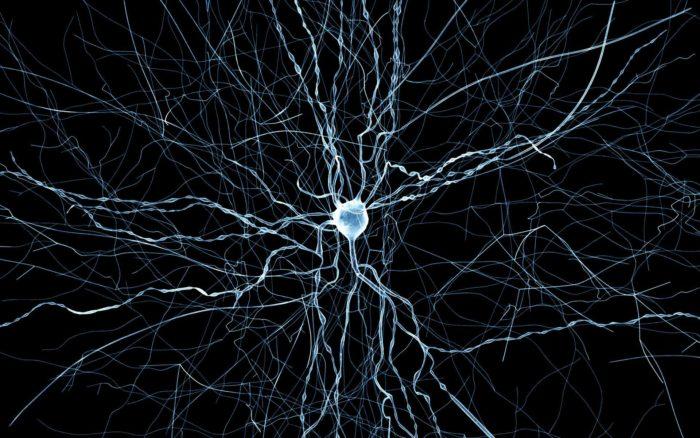 Взаимодействие нейронов между собой невозможно контролировать, как и подсознание, которое они обеспечивают