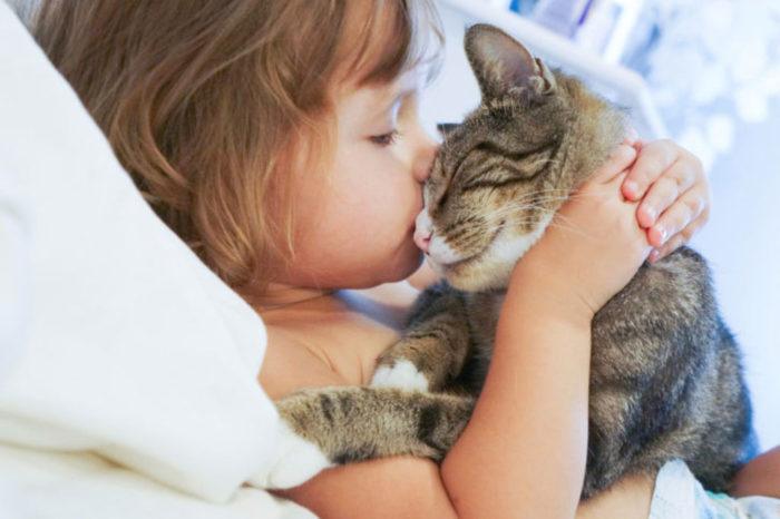 Многие дети проявляют агрессию по отношению к животным – это типично для их поведения.