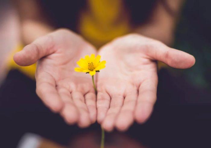 Эффективное прощение включает несколько составляющих