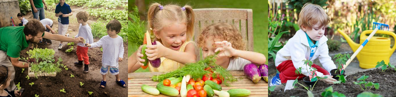 Детско-родительские тренинги с опытом деревенского двора