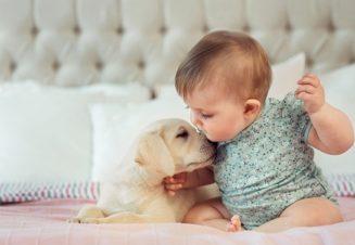Склонность к доброте начинает проявлятся с раннего детского возраста